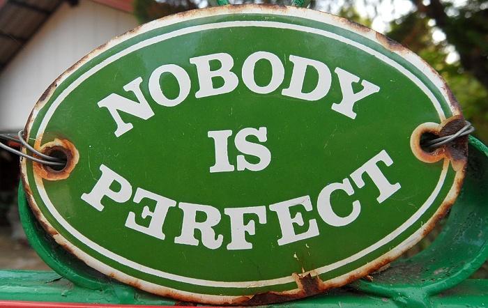 nobody is perfect schild