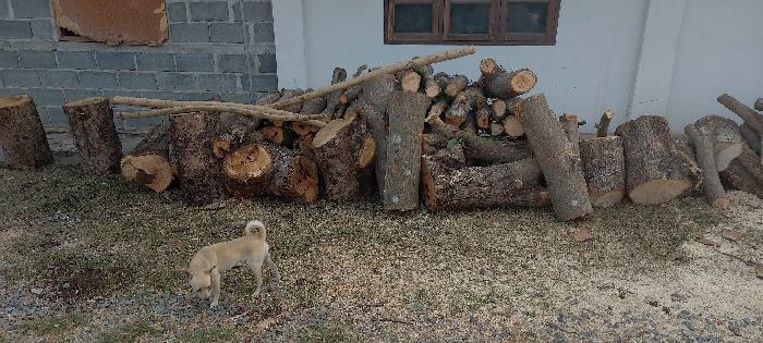 Holzstapel bereit zum holzkohle machen