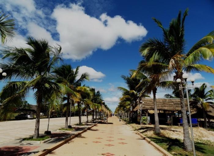 palmenweg