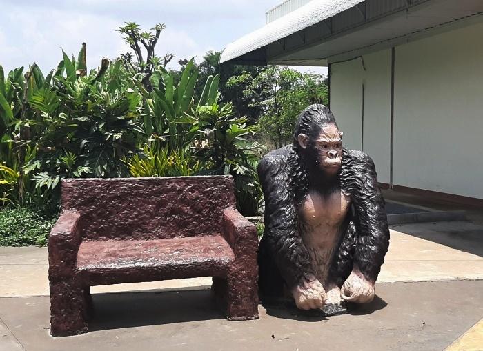 gorilla mit steinbank