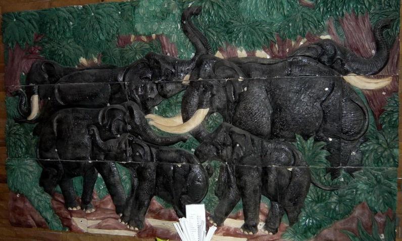 elefantenbild